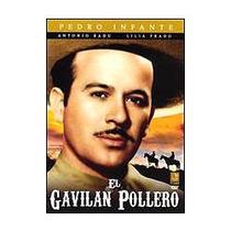 Dvd El Gavilan Pollero Pedro Infante Nuevo Envio Inmediato
