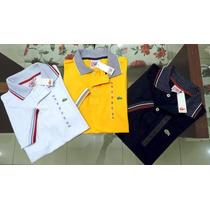 Camisas Lacoste Live Polo Importadas Kit 10 Unidades