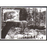 Col 08047 Congo Prova Primárias Animais Pré-históricos N