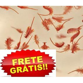Artemia De Água Doce + Micro Vermes +spirulina Frete Grátis