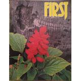 Lote De Revistas First
