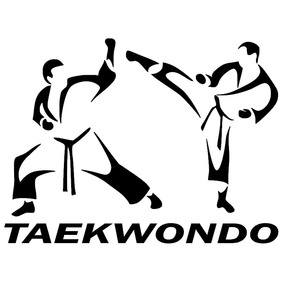 Adesivo Carro Taekwondo - Esporte - Arte Marcial