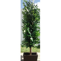 Ficus Planta Artificial Color Verde 2.0 M Altura