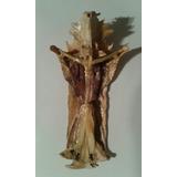 Cristo Con Virgen Maria De Hueso De Pez - Isla De Toas Zulia