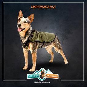 Protector Lluvia Para Perro Dazhbor Impermeable Chico