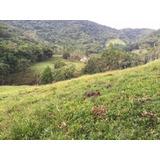 Lindo Terreno Em Blumenau - Aceita Permuta