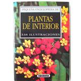 Plantas De Interior Enciclopedia Susaseta