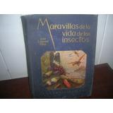 Libro Maravilla De La Vida De Los Insectos