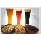 Licor Artesanal De Cerveza, Bidon De 5 Litros