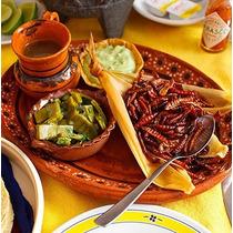 Platillo Gourmet Chinicuiles Envios Surtimos Restaurante 1kg