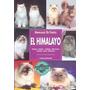 Libro Gato Himalayo Editorial Hispano Europea