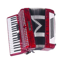 Acordeon Sanfona Michael 80 Baixos 9 Registros C/ Case+bag