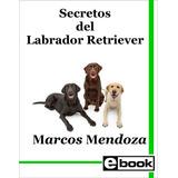 Labrador Retriever - Libro Adiestramiento Cachorro Adulto