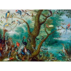 Foto P/ Quadro Jan Van Kessel 50x70cm Concerto Dos Pássaros