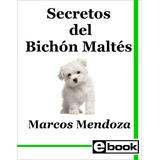 Bichon Maltes Libro Adiestramiento Cachorro Adulto Crianza
