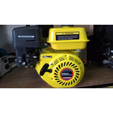 Motor Villa Vx200 + 196cc Con Caja Reductora 2a1