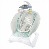 Silla Fisher Price Sweet Surroundings Deluxe