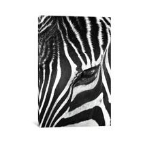 Pintura Arte Zebra Stare By Bob Larson, 40x26x0.75
