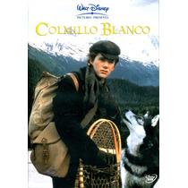 Dvd Colmillo Blanco ( White Fang ) 1991 - Randal Kleiser / E