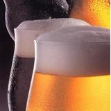 Projeto Cerveja Artesanal - Simples