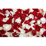 1.000 Pétalas De Rosas Artificiais Mistas Vermelho E Branco