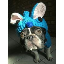 Servicio De Stud Bulldog Frances Monta Natura/ Inseminac