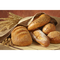 Recetas Panes Panaderia Profesional