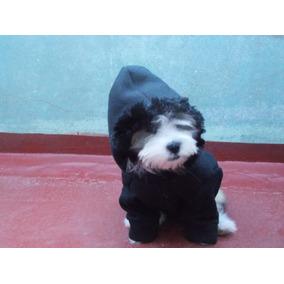 Molde De Roupinha Para Cachorro - Gato - Petshop -jaquetinha