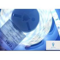 Fita Led Smd 7020 Branco Frio Ip65- 300% + Forte Que A 5050
