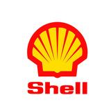 Adesivo Em Vinil, Shell, Decorativo.