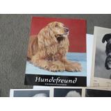 Almanaque Aleman Hundefreund Fotos Perros Año1965, Completo