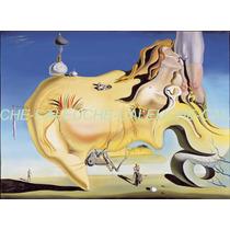 Cuadros Láminas Impresiones Lienzo - Dalí 40x50