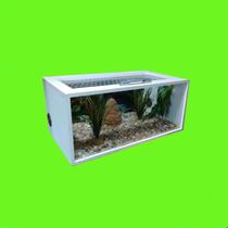 Terrário Para Répteis Pogona Corn Snake Gecko