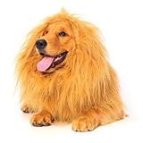 ?disfraz Para Perro Melena De León Para El Perro, El Perro D