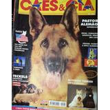 Revista Cães & Cia Nº 284 - Janeiro/2003