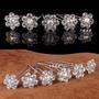 24 Pins Hebillas Cristal Blanco Flor Peinados Quince Novia