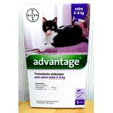 Pipeta Advantage Gato De 4 Hasta 8 Kg Bayer Anti Pulgas