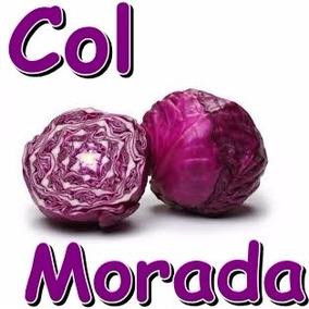 200 Semillas Col Morada Brassica Oleracea Hidroponia Repollo