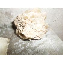 Rosa Del Desierto Roca Sedimentaria Detrítica100% Natural