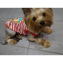Camisa Roupinha Cachorro Cães Pet - Regata