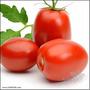 30 Semillas Orgánicas De Tomate Rio Grande