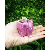 Maceta Mini Elefante Cerámica Diseño Y Varios Colores