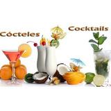 Kit Aprende Tragos Bebidas Barman Bartender Cocteles Ponches