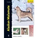 Alaskan Malamute (excellence) Evelyn E. Lanyon