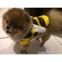 Roupinha Abelhinha Para Cães Tamanho P