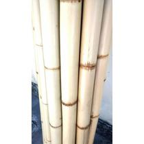 Bambu Tratado Cortamos Sob Medida Jardins Cercas - Dúzia
