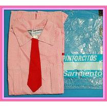 Pintorcito Unicamente Rosa Sarmiento Primera Calidad