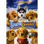 Snow Buddies - Cachorros En La Nieve - Dvd Original Usado