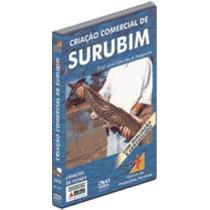 Dvd Criação Comercial De Surubim - Envio Grátis!!!