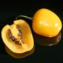 Chile Manzano Amarillo Semillas